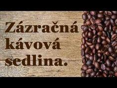 (220) Zázračná kávová sedlina. - YouTube Vegetables, Youtube, Food, Essen, Vegetable Recipes, Meals, Youtubers, Yemek, Veggies
