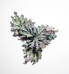 Choi, Ji Eun, brooch, forest series, 2011, silver and painting