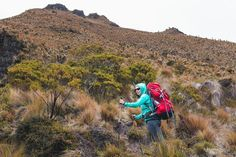 Hiking in Los Nevados National Park: Best Trek in Colombia — LAIDBACK TRIP South American Countries, Hiking Guide, Natural Park, Day Hike, What To Pack, Us Travel, Trekking, Countryside, National Parks