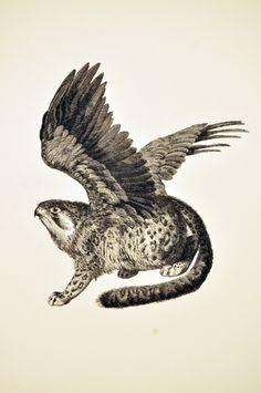 Falke-Jaguar TBB Himmel V012
