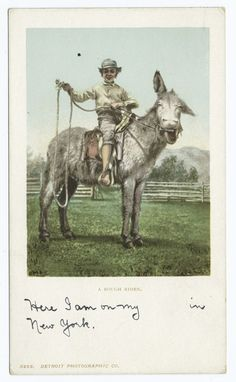A Rough Rider, Burro.Detroit Publishing Company postcards. Date Created: 1898 -1931. Date Issued: 1900 -1902.  Courtesy of The New York Public Library (USA).  www.nypl.org