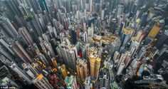 In his series 'Urban Jungle', photographer Andy Yeung shows us Hong Kong's high-rise density through the eyes of a drone. Hong Kong is home to seven millio Drones, Fotografia Drone, Drone Parrot, Hong Kong Architecture, Landscape Architecture, Hongkong, Cities, Hong Kong Disneyland, High Rise Building