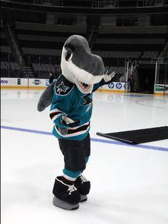 SJ SHARKIE!!! SAN JOSE SHARKS MASCOT!!!
