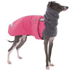 ITALIAN GREYHOUND Winter Coat Dog Coat Winter door VoyagersK9Apparel