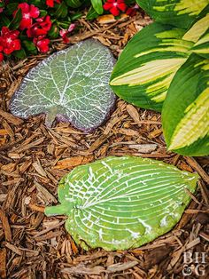 Set a stylish path outside your home with these do-it-yourself stepping-stones cast from concrete.