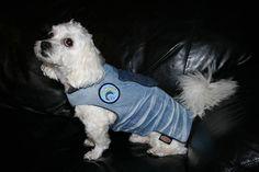 Mantel für Hunde Jeans Hundemantel