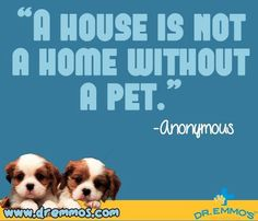 """""""House is not a home without a pet"""" quote  via www.Facebook.com/DrEmmo / www.DrEmmos.com"""