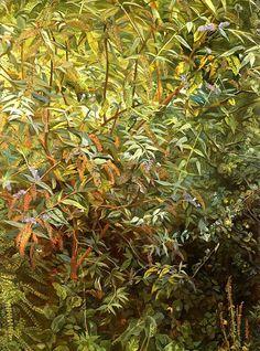 Garden, Notting Hill Gate - Lucian Freud, 1997