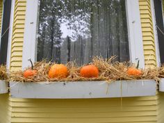 Easy & Cheap Fall window/flower box idea Sweet Posy Dreams: October 2011