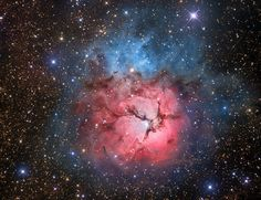 The Beautiful Trifid  Image Credit & Copyright: Máximo Ruiz