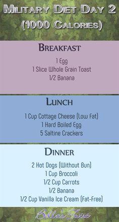 dieta veloce pro ana juice