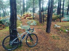 Brève #fontainebleau #gravelbike #ggp #graevlgrandparis #gravelblo  Fontainebleau forest South of Paris a gravelbike place to discover on 6th of Nov for Gravel Grand Paris gathering. More info at www.caminade.eu #fontainebleau #gravelbike #ggp #graevlgrandparis #gravelblo http://ift.tt/2eFFwcx  Brève #fontainebleau #gravelbike #ggp #graevlgrandparis #gravelblo  contact@caminade.eu (Caminade) : October 26 2016 at 02:37PM http://ift.tt/2eFF9P8