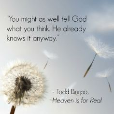Thanks for Being Imperfect Todd Burpo quote