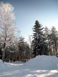 Laponie   Lapland #05
