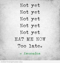 The truth about avocados :-)