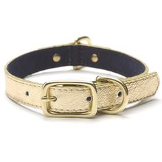 Pebble Leather Collar in Gold Dust - 7 sizes