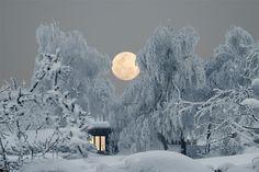 Winterlandschaft Foto & Bild   World, Deutschland, Europe Bilder auf fotocommunity