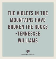 """The violets in the mountains have broken the rocks."" March 26 is the birthday of playwright Tennessee Williams. The Words, Cool Words, Tennessee Williams Quotes, Philosophy Quotes, Literary Quotes, My Escape, Best Quotes, Poem Quotes, Quotable Quotes"