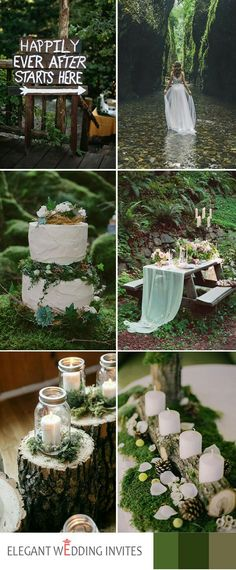 Love the moss! Bottom right Photo Only as Decor Idea for Sign in Table/ Gift Table/ Table with Photos of Loved Ones Remembered