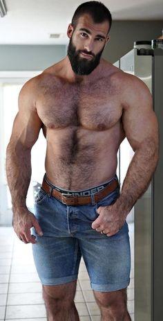 Hairy Hunks, Hairy Men, Bearded Men, Beard Model, Beefy Men, Hommes Sexy, Muscular Men, Hairy Chest, Mature Men