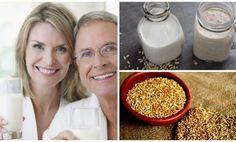 Razones por las que tomar leche de alpiste es útil para la salud y bajar de peso