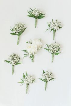 White baby's breath wedding boutonnieres for rustic wedding - Floral Inspiration., bouquets babys breath White baby's breath wedding boutonnieres for rustic wedding - Floral Inspiration. Babys Breath Boutonniere, White Boutonniere, Groom Boutonniere, Babies Breath Bouquet, Rustic Wedding Boutonniere, Baby's Breath Wedding Bouquet, Babies Breath Centerpiece, Babys Breath Wreath, Groomsmen