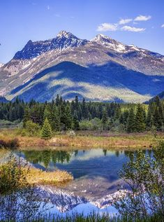 Bull River Valley, Montana