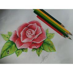 Instagram media darkabanatattoo - Flor terminada, Vamos tatuar ?  Studio Darkabana, 993472499 (style) . #manaus #studio #tattoo #flower #drawn #tattoed #tatuagem #ink #inked #follow4follow