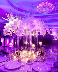 White centerpiece with purple uplighting in the reception = stunning