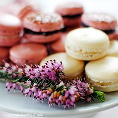 Macaron 101: French Meringue.   everything you'd want to know about making these adorable little delicious bites of beauty.