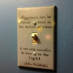 love this light switch cover!