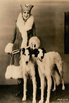 Actress Norma Shearer & Russian Wolfhounds