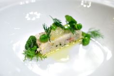 fish terrine plating - Google-søk