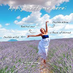 [Sharea Beauty tips] Perfume lovers~!