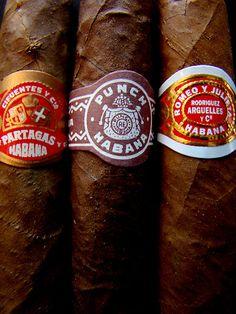 Cuban Cigars by Caroline Fournier http://www.redbubble.com/people/carfour/works/2266981-cuban-cigars