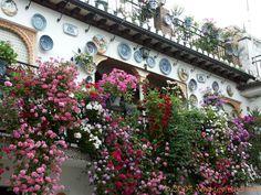 Maison aux assiettes Albaicin, Granada , España, Andalucia