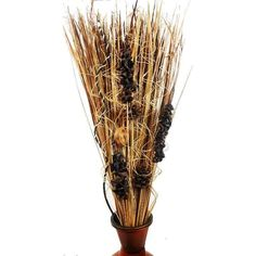 Home Accents, Grass, Bouquet, Home Decor, House Decorations, Decoration Home, Room Decor, Grasses, Bouquet Of Flowers