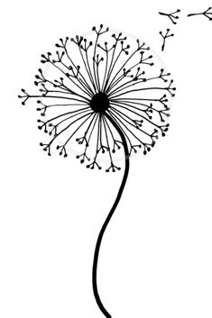 Easy how to draw a dandelion tutorial with our step by step dandelion drawing. This dandelion doodle is perfect for art journals, bullet journals and more. Art How to draw a dandelion: Easy dandelion drawing step by step tutorial Cute Easy Drawings, Cool Art Drawings, Pencil Art Drawings, Art Drawings Sketches, Doodle Drawings, Drawing Drawing, Easy Drawings Of Flowers, Easy To Draw Flowers, Easy Sketches To Draw