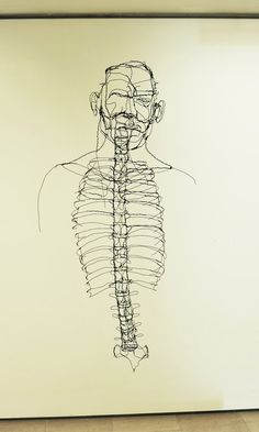 David Oliveira Ribcage wire sculpture