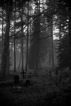 """There is a graveyard inside my head, a cemetary of the almost dead"" Old Cemeteries, Graveyards, Arte Obscura, Spooky Places, Cemetery Art, Dark Photography, Wedding Photography, Dark Forest, Magical Forest"