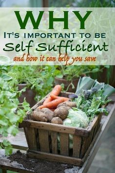 Why it's Important to be Self Sufficient and How it Can Help you Save Long Term