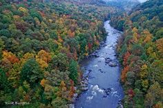 Meadow River, Nicholas Co. WV, by Rick Burgess