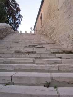 steps Buildings, Wood, Places, Travel, Viajes, Woodwind Instrument, Timber Wood, Destinations, Trees