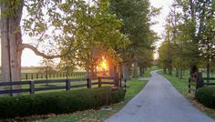 country driveway - Google Search