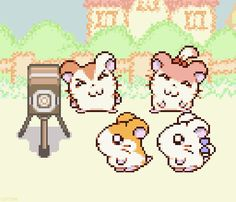 Hamtaro is an AMAZING game. Any nostalgic seekers should give it a try if you haven't yet.