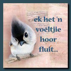Voëltjie hoor fluit Afrikaans, Idioms, South Africa, Qoutes, Teacher, Languages, Professor, Quotations, Quotes