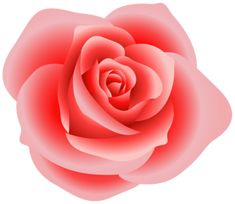 """Photo from album """"РОЗЫ"""" on Yandex. Rose Images, Flower Images, Colorful Roses, Pink Flowers, Pink Rose Png, Carnation Colors, Rose Clipart, Beautiful Flowers Images, Rose Art"""