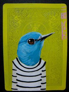 mountain bluebird portrait
