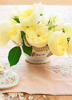 Beautiful soft yellow roses #wedding #teacup #pinkbowtie