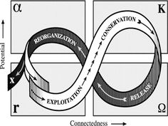Social-Ecological Systems can be defined by 4 stages: -The alpha stage (Reorganization): characterized by renewal and reorganization -The K stage (Conservation): Carrying capacity/maximum population -The R stage (Rapid growth): Maximum rate of growth and exploits new opportunities and available resources -The Omega state (Release): Characterized by chaos and uncertainty